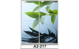Фотопечать А2-217 для шкафа-купе на две двери. Природа