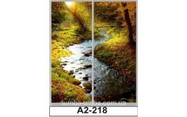 Фотопечать А2-218 для шкафа-купе на две двери. Природа