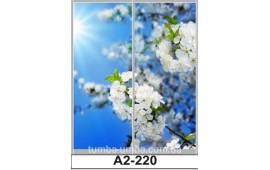 Фотопечать А2-220 для шкафа-купе на две двери. Природа
