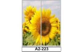 Фотопечать А2-223 для шкафа-купе на две двери. Цветы