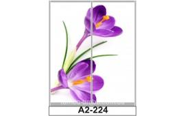Фотопечать А2-224 для шкафа-купе на две двери. Цветы