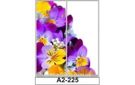 Фотопечать А2-225 для шкафа-купе на две двери. Цветы