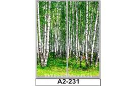 Фотопечать А2-231 для шкафа-купе на две двери. Природа