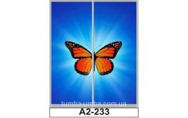 Фотопечать А2-233 для шкафа-купе на две двери. Бабочка