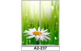 Фотопечать А2-237 для шкафа-купе на две двери. Природа