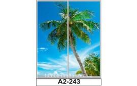 Фотопечать А2-243 для шкафа-купе на две двери. Пальмы