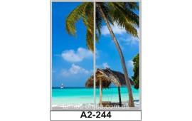 Фотопечать А2-244 для шкафа-купе на две двери. Пальмы