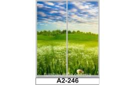 Фотопечать А2-246 для шкафа-купе на две двери. Природа