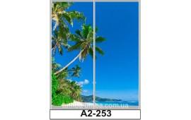 Фотопечать А2-253 для шкафа-купе на две двери. Пальмы
