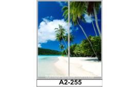 Фотопечать А2-255 для шкафа-купе на две двери. Пальмы