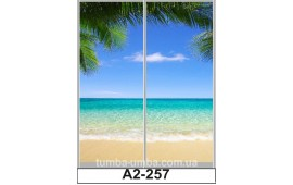 Фотопечать А2-257 для шкафа-купе на две двери. Пальмы