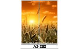 Фотопечать А2-265 для шкафа-купе на две двери. Закат