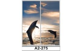 Фотопечать А2-275 для шкафа-купе на две двери. Дельфины