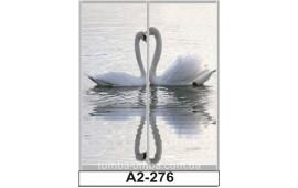 Фотопечать А2-276 для шкафа-купе на две двери. Лебедь