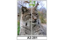 Фотопечать А2-281 для шкафа-купе на две двери. Рысь