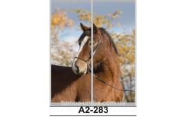 Фотопечать А2-283 для шкафа-купе на две двери. Конь