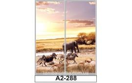 Фотопечать А2-288 для шкафа-купе на две двери. Африка
