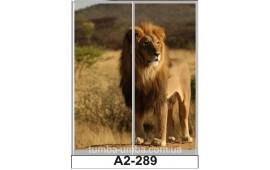 Фотопечать А2-289 для шкафа-купе на две двери. Лев