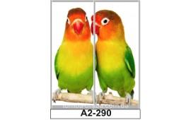 Фотопечать А2-290 для шкафа-купе на две двери. Попугаи