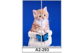 Фотопечать А2-293 для шкафа-купе на две двери. Котёнок