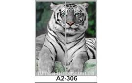 Фотопечать А2-306 для шкафа-купе на две двери. Тигр