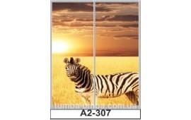 Фотопечать А2-307 для шкафа-купе на две двери. Африка