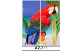 Фотопечать А2-311 для шкафа-купе на две двери. Попугай