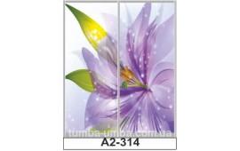 Фотопечать А2-314 для шкафа-купе на две двери. Цветы