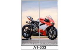 Фотопечать А2-333 для шкафа-купе на две двери. Мотоцикл