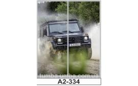 Фотопечать А2-334 для шкафа-купе на две двери. Автомобиль
