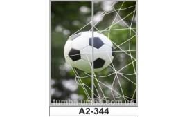Фотопечать А2-344 для шкафа-купе на две двери. Футбол