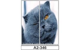 Фотопечать А2-346 для шкафа-купе на две двери. Кот