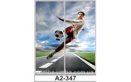 Фотопечать А2-347 для шкафа-купе на две двери. Футбол