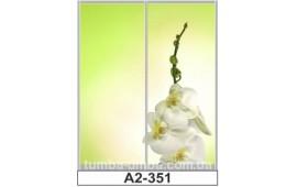 Фотопечать А2-351 для шкафа-купе на две двери. Цветы