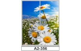 Фотопечать А2-356 для шкафа-купе на две двери. Цветы