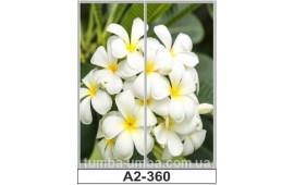 Фотопечать А2-360 для шкафа-купе на две двери. Цветы