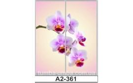 Фотопечать А2-361 для шкафа-купе на две двери. Цветы
