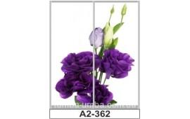 Фотопечать А2-362 для шкафа-купе на две двери. Цветы