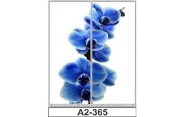 Фотопечать А2-365 для шкафа-купе на две двери. Цветы