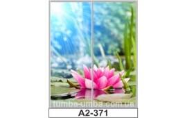 Фотопечать А2-371 для шкафа-купе на две двери. Цветы