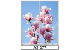 Фотопечать А2-377 для шкафа-купе на две двери. Цветы