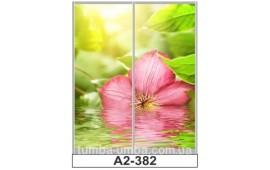 Фотопечать А2-382 для шкафа-купе на две двери. Цветы