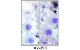 Фотопечать А2-390 для шкафа-купе на две двери. Цветы