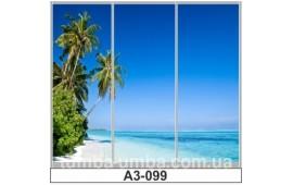 Фотопечать А3-099 для шкафа-купе на три двери. Пальмы