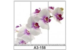 Фотопечать А3-158 для шкафа-купе на три двери. Цветы