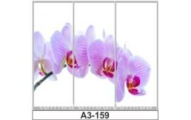 Фотопечать А3-159 для шкафа-купе на три двери. Цветы