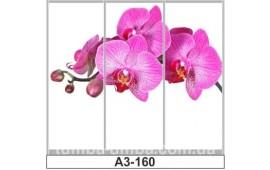 Фотопечать А3-160 для шкафа-купе на три двери. Цветы