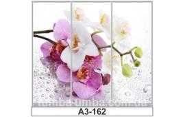 Фотопечать А3-162 для шкафа-купе на три двери. Цветы