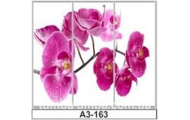 Фотопечать А3-163 для шкафа-купе на три двери. Цветы