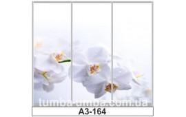 Фотопечать А3-164 для шкафа-купе на три двери. Цветы